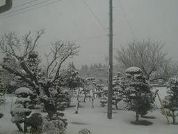 Snow_scene20080202
