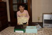 With_catandbox