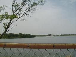 Lake_by_school