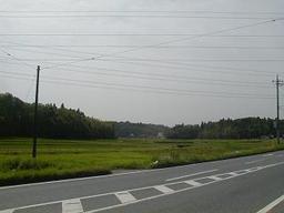 Road_field
