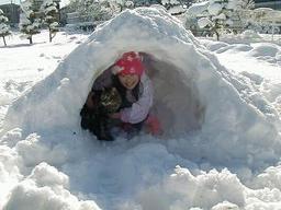 snowmorning2