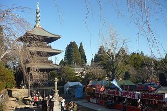 Shibayama_niouson001