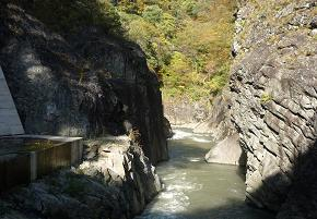 20101102_karihaisuiro