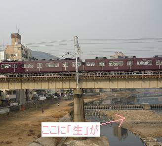 20110205_2osaka05