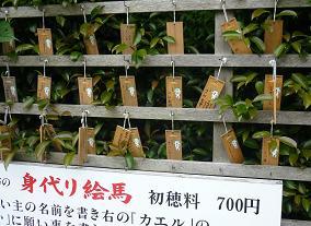 20110605_enoshima102