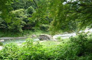 20110730_okutama008