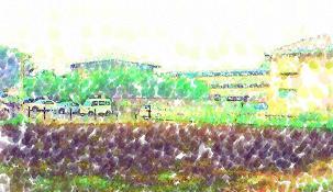 20110807_field001