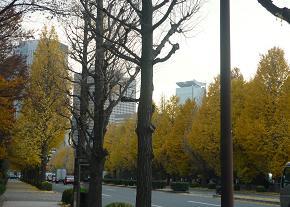 20111227_tokyo01