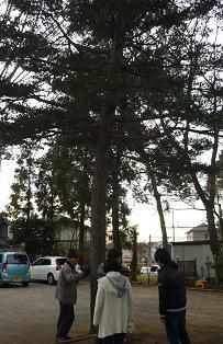 20120101_hatsumoude02