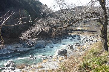 20120218_nombeikai011