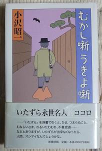 20130217_shouichi_ozawa01