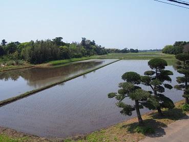 20160501_higata_garden008