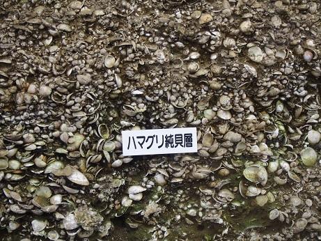 20170422_kasorikaizuka007