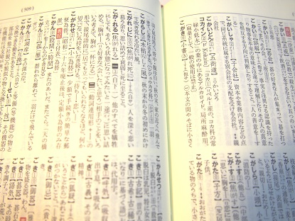 20171217_dictionary01